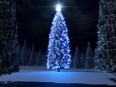 christmas_tree_400x300